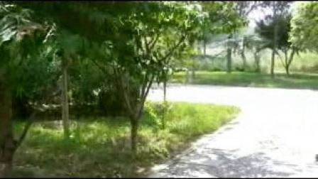 美丽的邱县(剪影)【12】:河北视频1