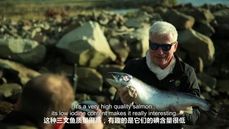 法国顶级厨师在苏格兰——不一样的三文鱼养殖场