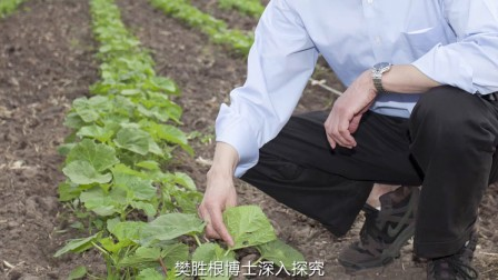 2017复旦管理学杰出贡献奖 樊胜根 短片