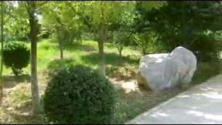 美丽的邱县(剪影)【15】:河北视频1