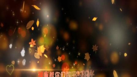 第一集 2017.10.22 WX婚礼片头