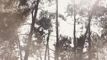 Mayad - Dennis and Paula on Vimeo
