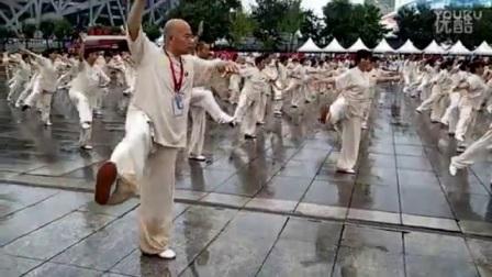 首届国际游龙拳交流联谊会鸟巢集体演练_标清