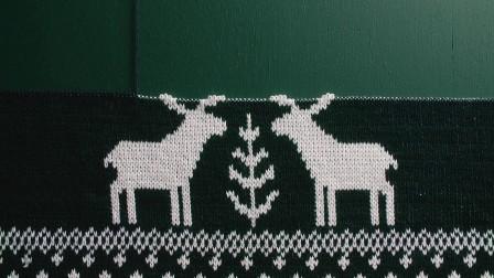 名士温暖圣诞之驯鹿