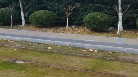 体验南京河西有轨电车(4)