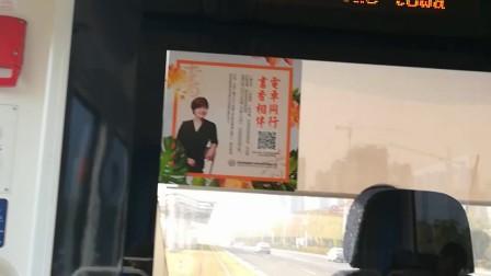 体验南京河西有轨电车(11)