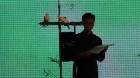 中国风魔术《凤》舞台魔术-向浩
