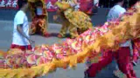 欢橙演艺----龙狮