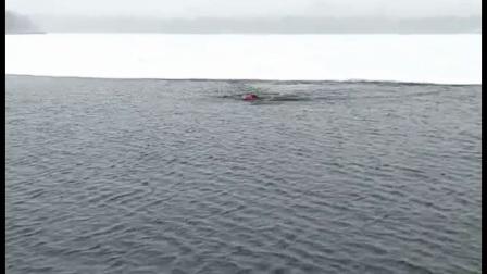 张敏石冬泳2017吟诗加歌唱