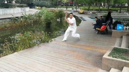 长寿公园徐德金心意六合拳演练集锦3