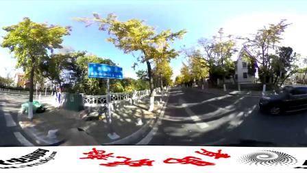VR新闻:青岛秋日全景速写 最美环岛路遇见欧韵别墅 4K尺寸