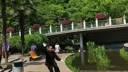 长寿公园徐德金心意六合拳演练集锦