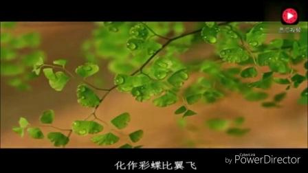 [002_00035][tudou]愛相隨(好聽卻未曾流行的三首網絡情歌)