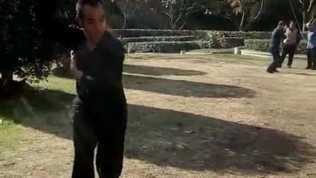 长寿公园徐德金心意六合拳演练集锦9
