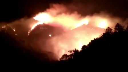 珠海凤凰山大火 消防赶赴现场扑救