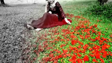 Meena_Thao-_Rov_Ua_Npau_Sau_Pom_Koj