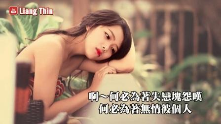 [004_00024][tudou][精選台語歌] 你一定喜歡經💙最愛懷舊經典老歌- 值得收藏👍動態歌詞Taiwanese songs