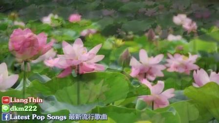 [004_00023][tudou][精選台語歌]  經典台語懷舊老歌 - 值得收藏👍百聽不膩 Taiwanese songs