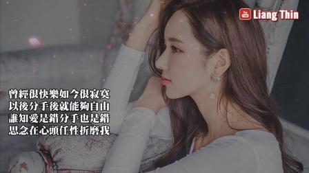[004_00036][tudou]【13首】精選抒情歌 聽到醉了 、傷了、唱哭多少備愛人的心聲(歌詞) 今夜不想一個人
