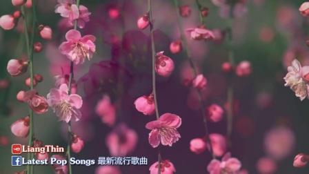 [004_00052][tudou]夜晚最適合聽的輕音樂 -  放鬆解壓👍1小時純中國風音樂 你一定喜歡 Relaxing  Music