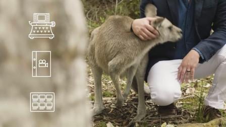 来到悉尼为My RODE Reel 2018制作属于自己的影片!