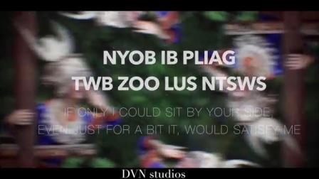 Nyiam Koj Tiag Tsis Zoo Qhia(网络版)