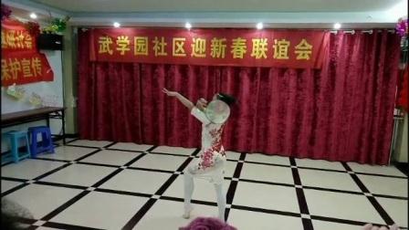 武学园社区迎新春联欢会纪录片