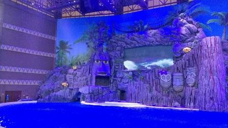 长隆海洋王国海豚表演
