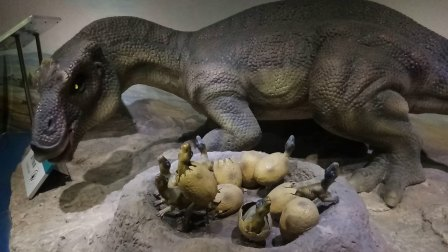自然博物馆仿真恐龙
