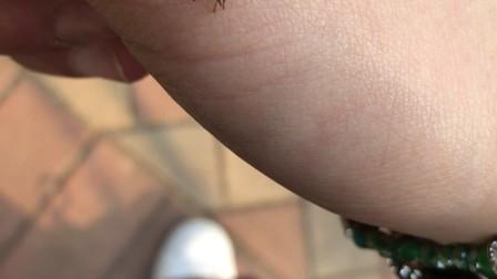抓到的小蟋蟀🦗
