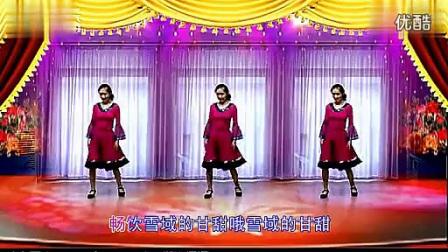 清风细雨 广场舞 吉祥藏历年 正面_标清_标清