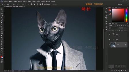 Photoshop基础入门教程第18课-钢笔工具组