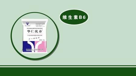 华仁优养产品宣传片-河北主旋律广告