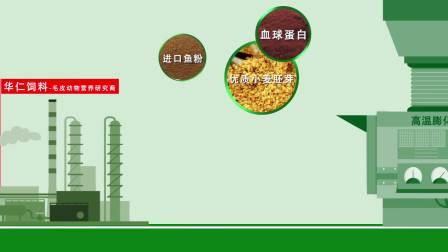 金胚营养逗产品宣传片-河北主旋律广告