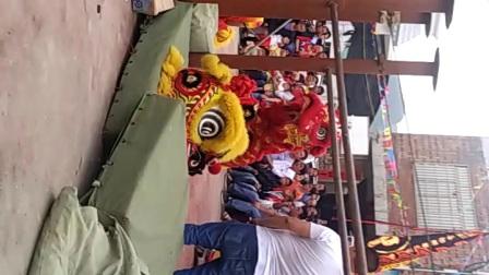 广西贺州黄姚古镇界塘村二月初二龙抬头狮王争霸赛