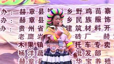 赫章县雉街乡野鸡苗寨民族传统文化艺术节-文艺演出