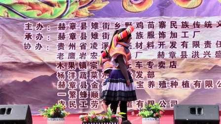 赫章县雉街乡野鸡苗寨民族传统文化艺术节-文艺演出之二