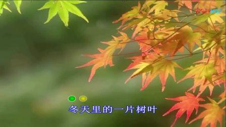 《期待春天》刘亚芹_高清