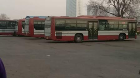 史各庄公交站早行人_20180327_