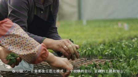 科迪马&豪根道 :中粮智慧农场项目