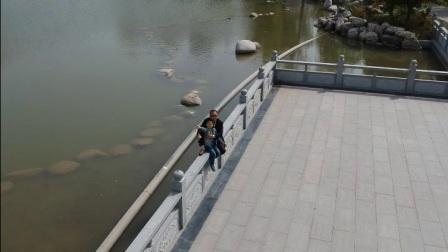 鸟瞰木塔寺公园(导演:大史)