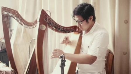 广州 诗蕴 26弦小竖琴定制