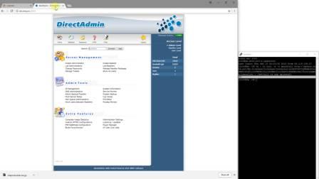 Site.pro - Plugin installation guide for DirectAdmin