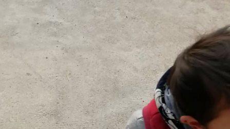 青龙岩玩耍VID_20180207