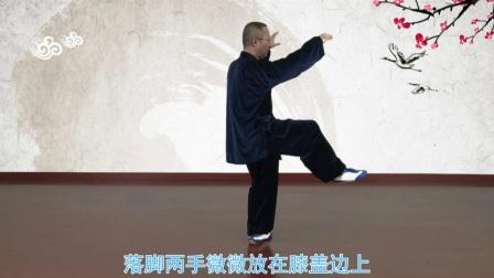 8.杨氏太极拳八十五式-第八课-第38式-第48式