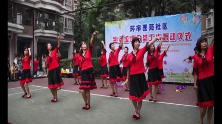 菲舞灵动广场舞《家乡的小河》