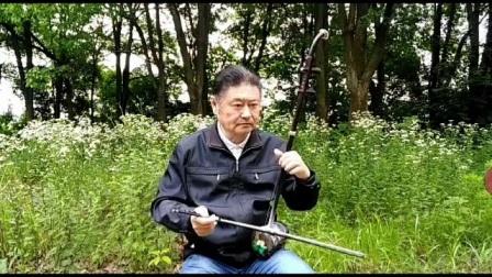 二胡独奏,橄榄树,演奏谢胜德,作曲李泰祥