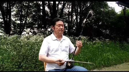 二胡独奏,梅花泪,演奏谢胜德,作曲刘亦敏