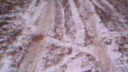 冰冻下的蜜蜂房3