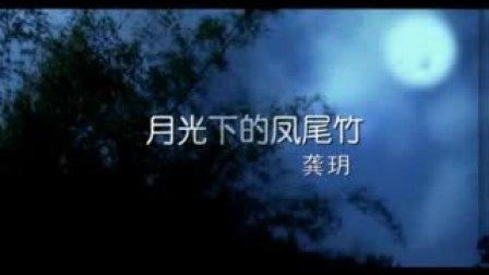 龚玥 - 月光下的凤尾竹